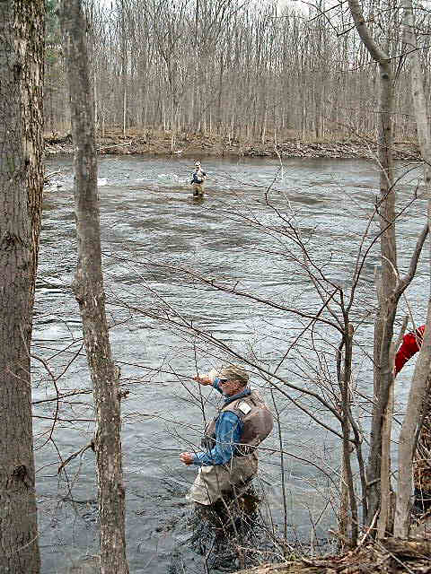 Salmon river fishing for Trout fishing ny